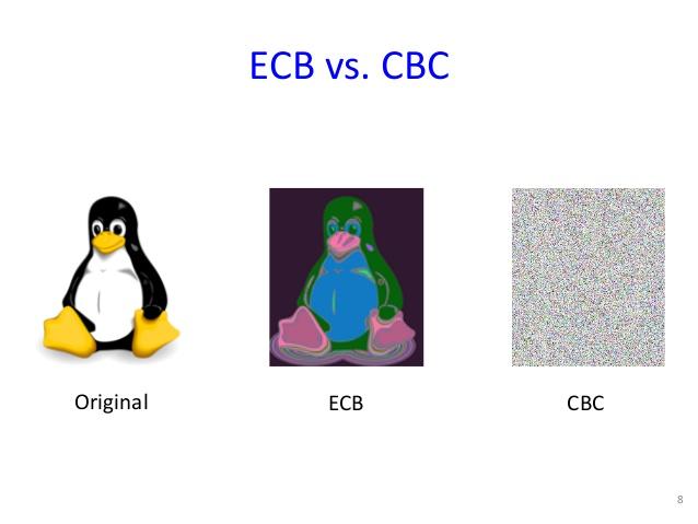 CBC - bi0s wiki
